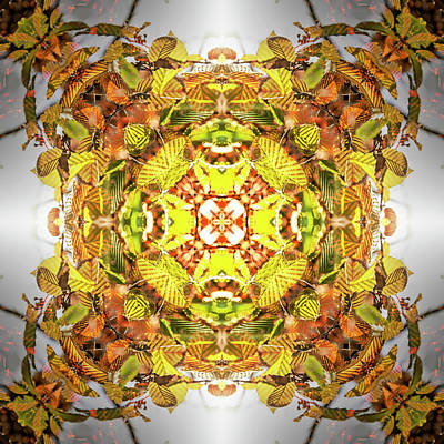 Digital Art - Kaleidoscopia - Autumn Splendour by Frans Blok