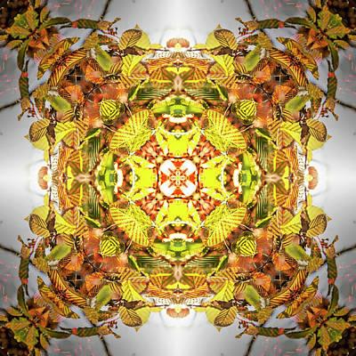 Digital Art - Kaleidoscopia - Autumn Splendour by Frans Blok