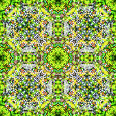 Digital Art - Kaleidoscopia - Blueberry Hill by Frans Blok