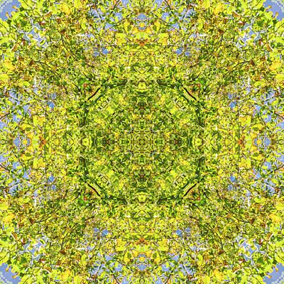 Digital Art - Kaleidoscopia - Early Autumn by Frans Blok