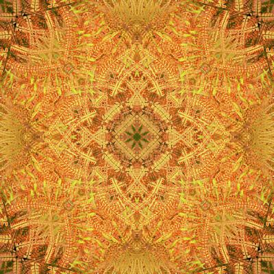Digital Art - Kaleidoscopia - Ferns On Fire by Frans Blok