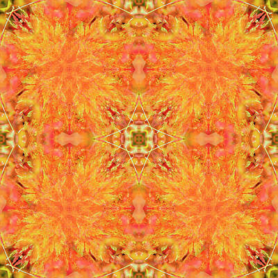 Digital Art - Kaleidoscopia - Fiery Acer by Frans Blok