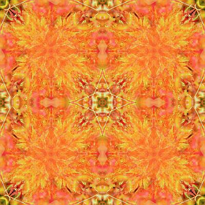 Digital Art - Kaleidoscopia - Fiery Acer by Frans Blok