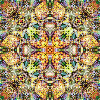 Digital Art - Kaleidoscopia - Forest Hike by Frans Blok