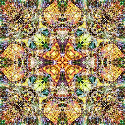 Digital Art - Kaleidoscopia - Forest Hike by Frans Blok