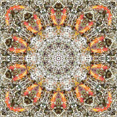 Digital Art - Kaleidoscopia - Gravel Road by Frans Blok