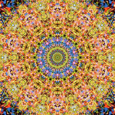 Digital Art - Kaleidoscopia - Hazel Pine by Frans Blok