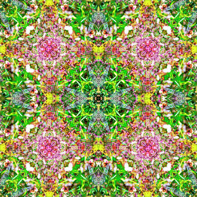Digital Art - Kaleidoscopia - Hortensias In The Park by Frans Blok