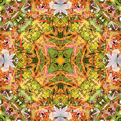 Digital Art - Kaleidoscopia - Liquidambar Green by Frans Blok