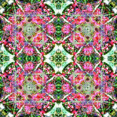 Digital Art - Kaleidoscopia - Magenta Marvel by Frans Blok