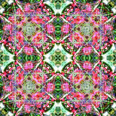 Digital Art - Kaleidoscopia - Magenta Marvel by Frans Blok