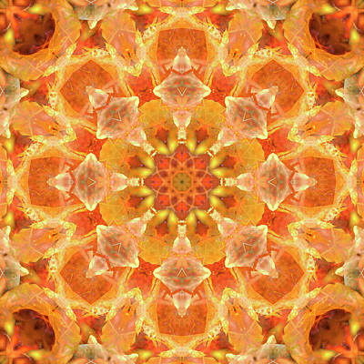 Digital Art - Kaleidoscopia - Nuclear Orange by Frans Blok