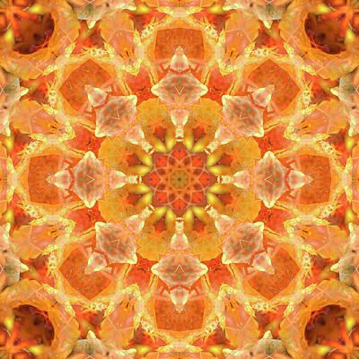 Digital Art - Kaleidoscopia - Nuclear Orange by Frans Blok