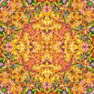 Digital Art - Kaleidoscopia - Quercus Robur by Frans Blok