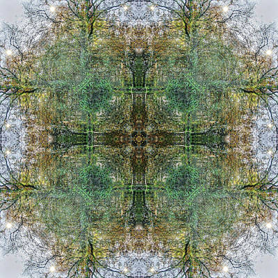 Digital Art - Kaleidoscopia - Sixteen Suns by Frans Blok