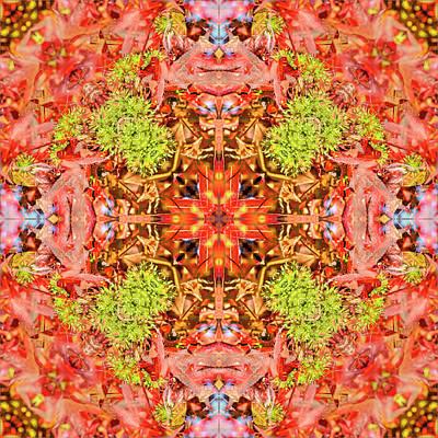 Digital Art - Kaleidoscopia - Spiky Fruits by Frans Blok