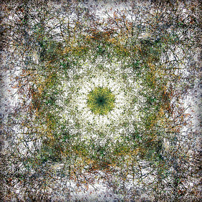 Digital Art - Kaleidoscopia - Vibrant White by Frans Blok