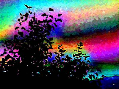 Digital Art - Kaleidoscopic Sky by Will Borden