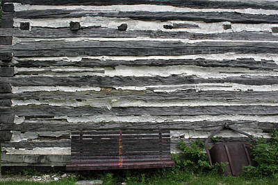 Photograph - Kammer Cabin Bench 5 by Mary Bedy