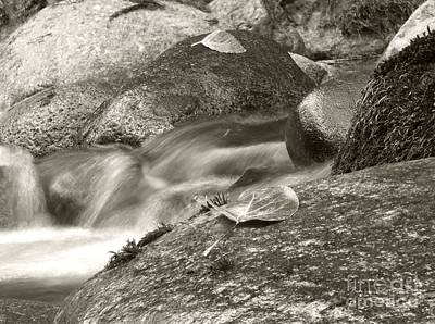 Photograph - Kanaka Creek Bw by Sharon Talson