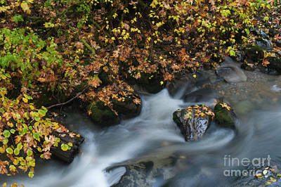 Photograph - Kanaka Creek In Fall by Rod Wiens