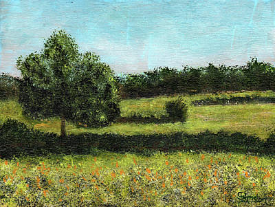 Painting - Kanaka Meadow by Cindy Johnston