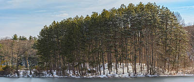 Photograph - Kanawauke Tall Pines by Angelo Marcialis