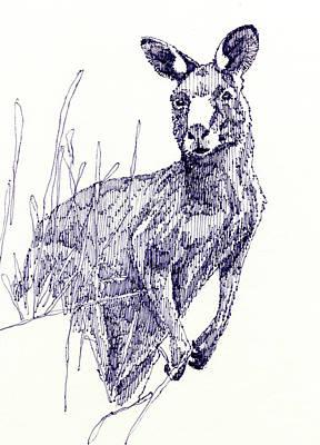 Kangaroo Original by John D Benson