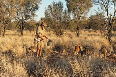Photograph - Kangaroo Sanctuary by Racheal Christian