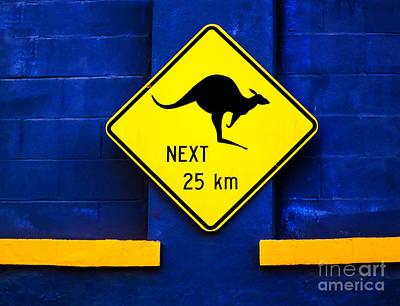 Photograph - Kangaroos Next 25 Kilometers by Frances Ann Hattier