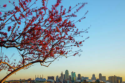 Photograph - Kansas City Skyline In Spring by Gregory Ballos