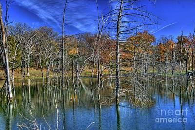 Photograph - Kansas Marsh by Tony Baca