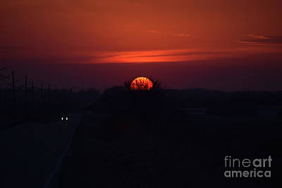 Photograph - Kansas Sunset In The Tree by Mark McReynolds