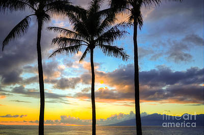 Art Print featuring the photograph Kapalua Dream by Kelly Wade