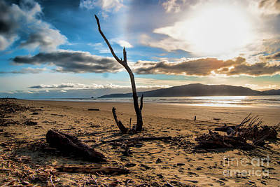 Photograph - Kapiti Sunset by Karen Lewis