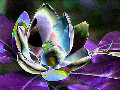 Photograph - Kapow Purple Magnolia by Carolyn Jacob