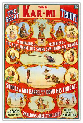 Swallow Mixed Media - Kar-mi And The Great Victorina Troupe Originators by Carsten Reisinger