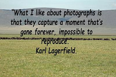 Photograph - Karl Lagerfeld Quote by Tony Murtagh