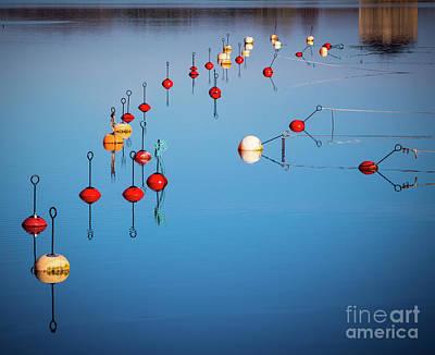 Reflective Morning Photograph - Karlskrona Buoys by Inge Johnsson