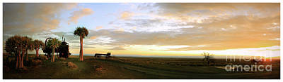 Photograph - Karoo Desert 4 by Michael Edwards
