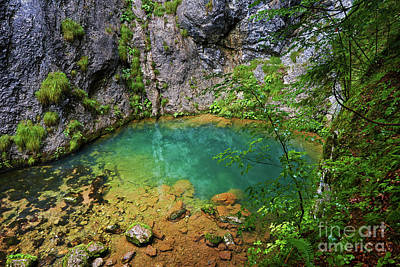 Cenote Photograph - Karstic Spring In Romania by Catalin Petolea