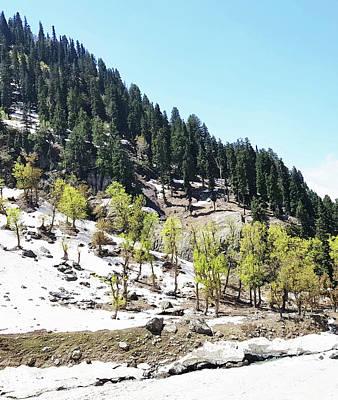Pyrography - Kashmir V2 by Uma Gokhale