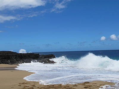 Photograph - Kauai Beach by Connie Kogler