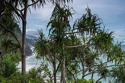 Photograph - Kauai Coastline by Robert Potts