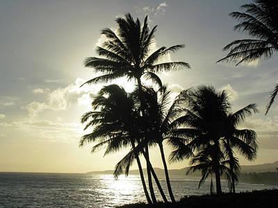 Photograph - Kauai, Hawaii - Sunset 05  by Pamela Critchlow