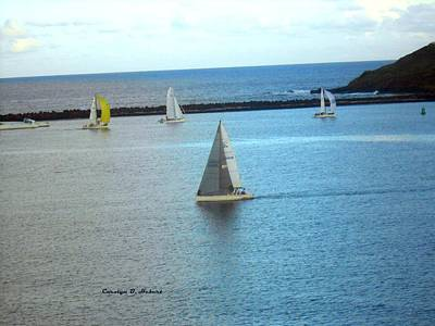 Wall Art - Photograph - Sailboats At Kauai Hawaii Marina by Carolyn Hebert