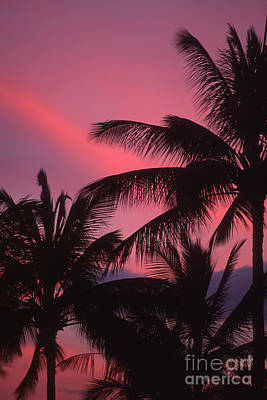 Photograph - Kauai Sunset 2 by Stan and Anne Foster