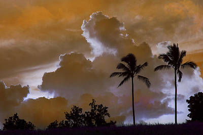 Photograph - Kauai Sunset With Palms by Frank Wilson