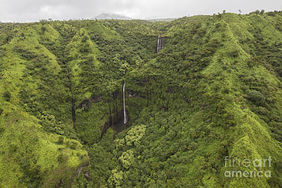Photograph - Kauai Waterfall by Shishir Sathe