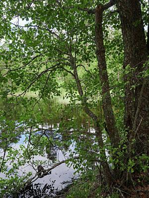 Photograph - Kaulanen Lake by Jouko Lehto